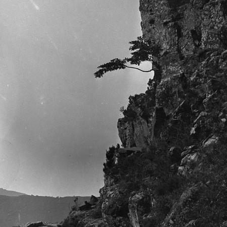Rupe, valle Tanagorda 1919