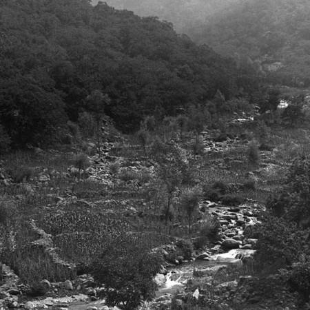 Fagiolai di Iera 1920