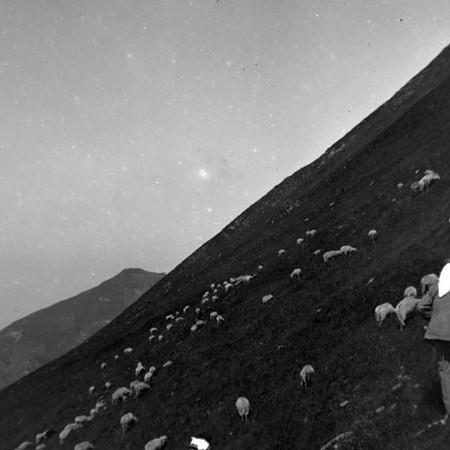 Alpeggio di Monte Sillara